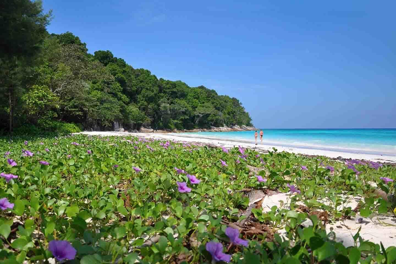 Apsara Beachfront Resort & Villa lage ab vom trubel